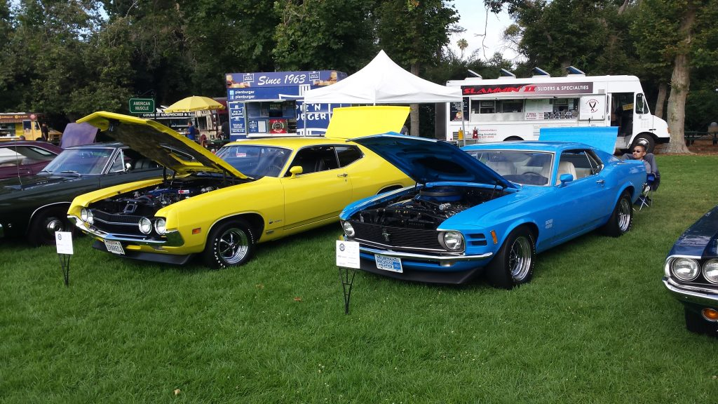 Ford Classic Torino Cars