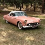 Scott Mahoney's 1956 Thunderbird in Australia.